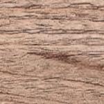 49W - Дуб песок